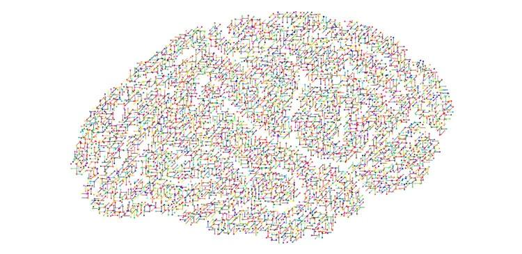 IFESP-utiliza-novas-descobertas-das-ciências-cognitivas-em-seu-método-de-ensino